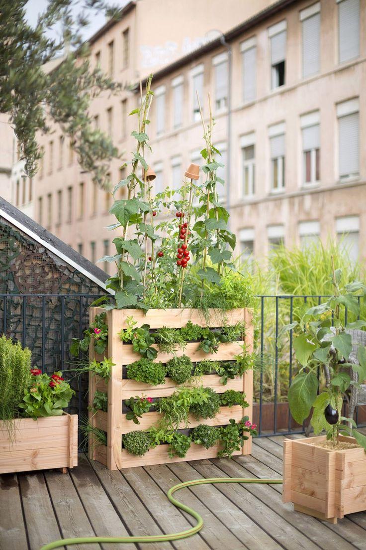 Conseils jardinage potager balcon jardiner balcon - Jardin sur un balcon ...