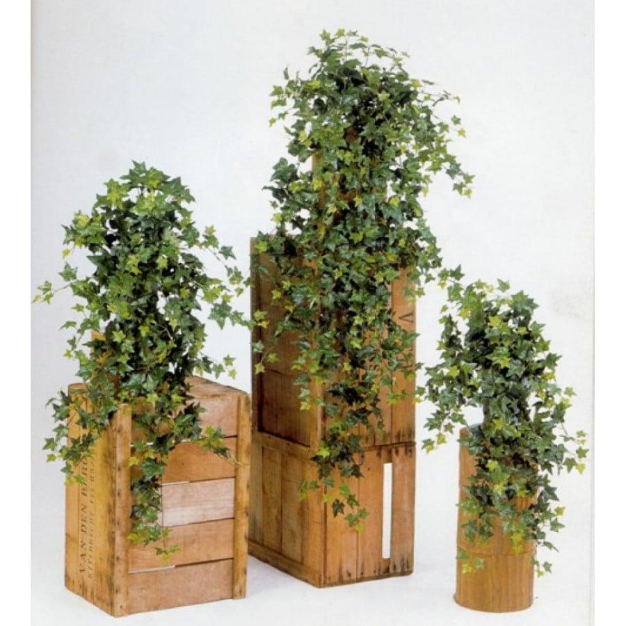 S lection les plus jolies plantes artificielles for Lierre artificiel exterieur