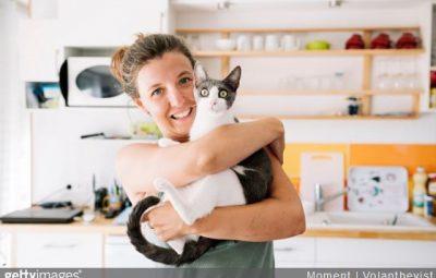 7-conseils-santé-soigner-chat-alimentation-veterinaire
