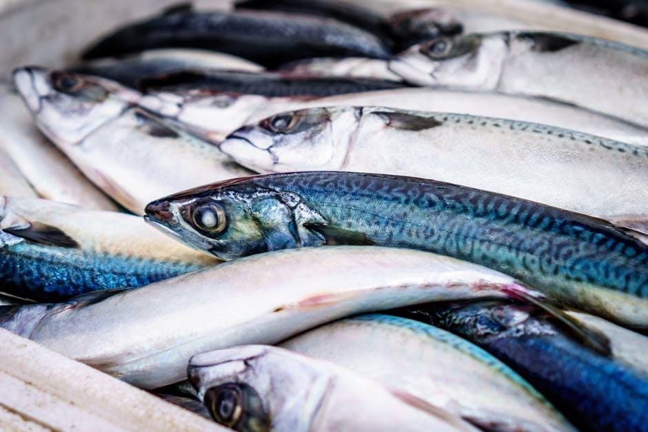 Combien de kilos de poisson sont consommés en France ?