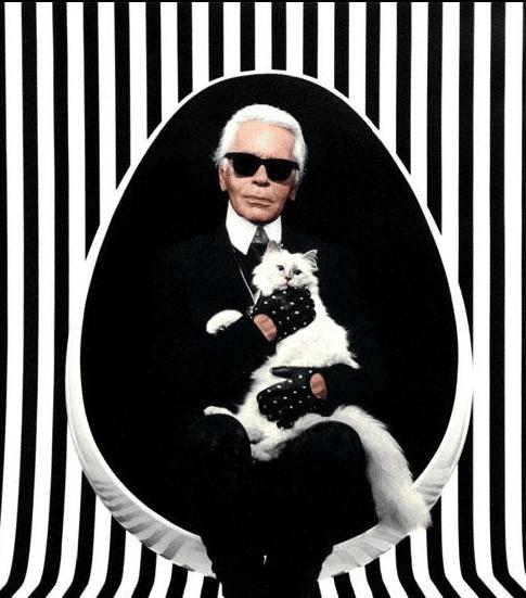 Karl Lagerfeld est tombé sous le charme de la belle choupette.